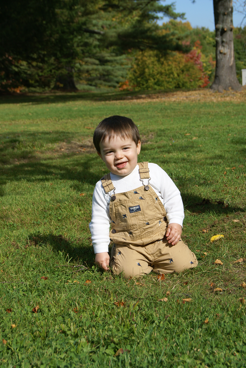 Baby in overalls in a field
